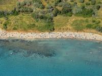 przina-beach-wide330DBFA6-61A2-503F-0681-DD94F43F8675.jpg